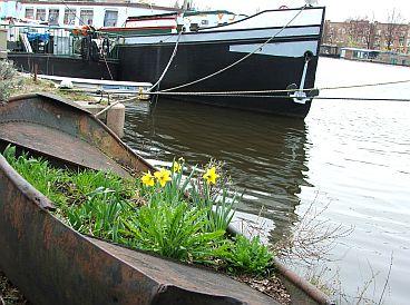 Amsterdamse Lente