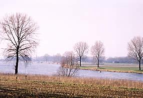 De Maas tussen Megen en Ravenstein