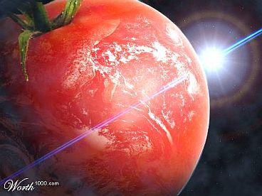 World Tomato